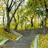 Крещатый (бывший Пионерский) парк в Киеве :: Сергей Тарабара