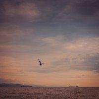 Морской пейзаж :: Олег Загорулько