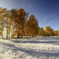 И слышатся песни, осени снежной 7 :: Сергей Жуков