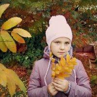 Цвета :: Юлия Шишаева