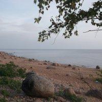 Вид на залив :: Svetlana Lyaxovich