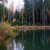 Осенняя зарисовка :: Юрий Шувалов