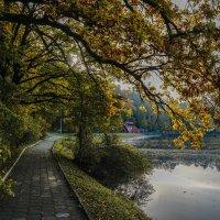 Тихая алея :: Владимир Орлов