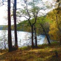 Залив озера Кисегач :: Александр Садовский