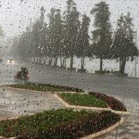 Шел дождь,автобус ехал...Далат. Вьетнам. :: Татьяна Калинкина