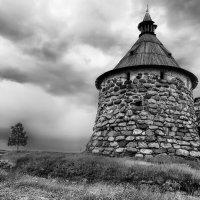 Всем ветрам назло :: Igor Antipov