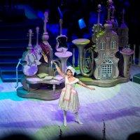 Геликон-опера впервые в Ставрополе :: Евгений Михайленко