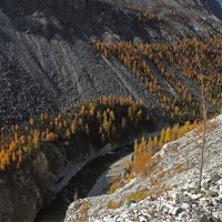 Стою у обрыва,любуясь рекой... :: Александр Попов