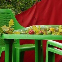 Столик,дождь и яблоки :: Владимир Гилясев