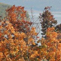 Осень :: Филарит