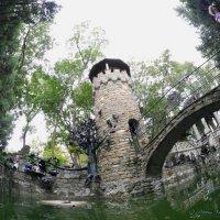 Сторожевая башня или черепаха на плоту. :: Alexey YakovLev