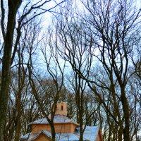 Строится церковь.. :: Клара