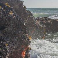 Мокрые камни :: Арвидс Гурскис