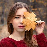 Осень :: Екатерина Фокс