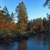 Природы дикой совершенство... :: Лесо-Вед (Баранов)
