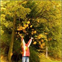 уже начали падать листья с деревьев :: Jiří Valiska