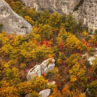 Осень в горах :: Nyusha
