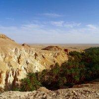 Атласские горы в Тунисе. :: Чария Зоя