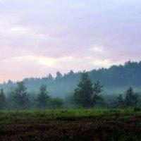 Утренний туман. :: Валентина ツ ღ✿ღ