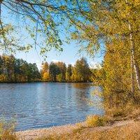 Чудный день осени 4 :: Виталий
