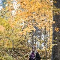 В лесу :: Женя Рыжов