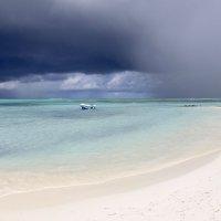 На Мальдивских островах :: Елена