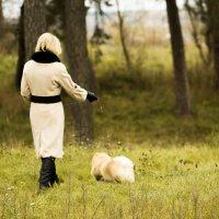 Дама с собачкой :: Сергей Дубинин