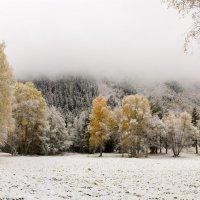 Седая осень :: Алексей Яковлев
