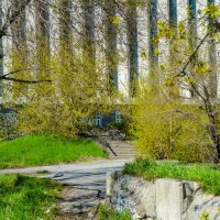 дорожки к лестнице :: Света Кондрашова