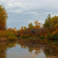пасмурная осень :: Надежда Щупленкова