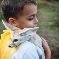 Le petit prince :: Александра Реброва