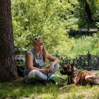Я погрущу в тени вместе со своей собачкой... :: Юрий Яловенко