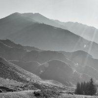 Утро в горах. :: Олег Игуменов