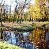 Прогулка по Осени. :: Марина Харченкова