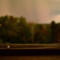 Был дождь, был и град :: Олег Лопухов