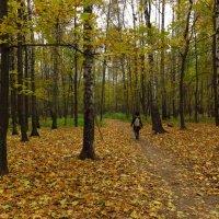 Настоящий октябрь :: Андрей Лукьянов