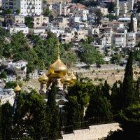 Иерусалим, Храмовая Гора, предгорье :: Яков Геллер