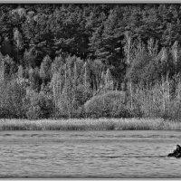 Рыбак :: Михаил Цегалко