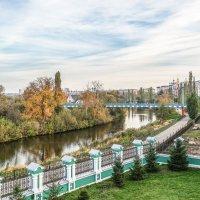 Золотая осень. :: Александр Селезнев