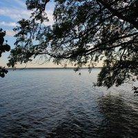 Озеро Отрадное :: Evgenia Sharabanova