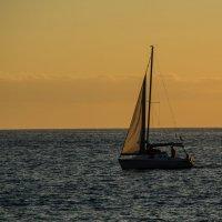 yacht :: Дмитрий Чулков