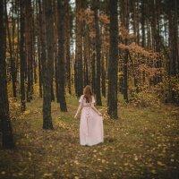 грезы осени :: Мария Ставцева