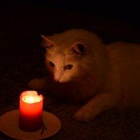 у свечи :: Наталия П