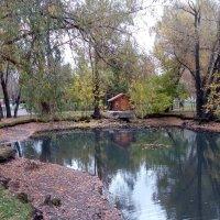 Осень в парке :: Александр Алексеев