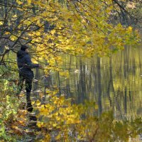 Золотая осень в графском парке :: Олег Пучков