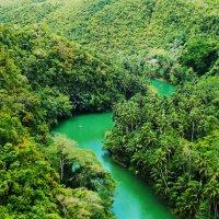 Тропики :: Лариса Журавлева