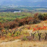 Вид на старый Крым с г.Агармыш :: ирина )))