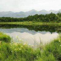 Зелёная долина. :: Sven Rok