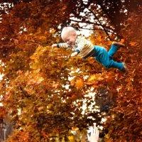 Осенние забавы :: Фотохудожник Наталья Смирнова