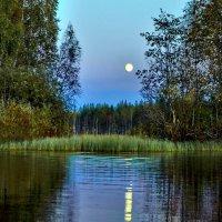 """Волшебство вечера на озере"". Карелия. Леппясюрья. Озеро Саркоярви. :: Владимир Ильич Батарин"